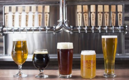 Brew Hop STL Launches in St. Louis This Weekend, Offering Educational Brewery Tours and, Yes, Beer