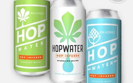Urban Chestnut Will Start Selling Non-Alcoholic 'Hop Water' This Summer
